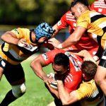 Rugby: Dinamo înfruntă CSM București în etapa a VI-a