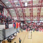 Handbal Dinamo